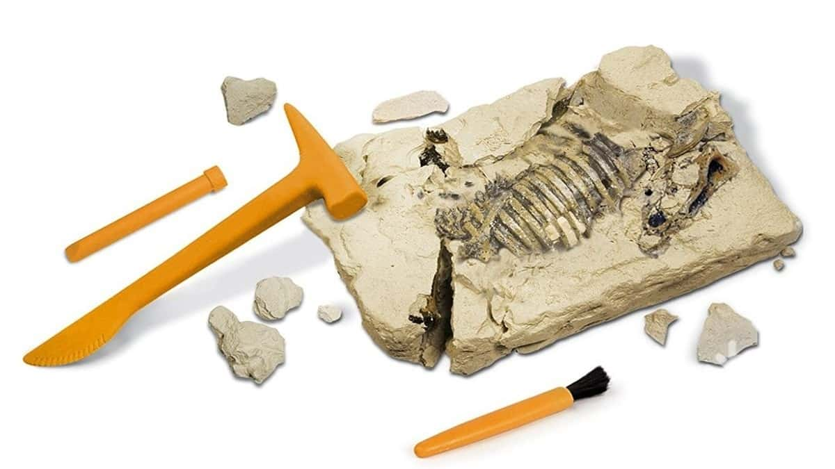 Best Archeology Toys for Kids 2019 Reviewed – Top 10
